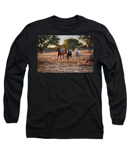 Running Horses Long Sleeve T-Shirt