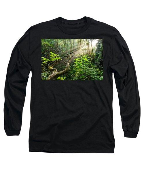 Sacred Grove Long Sleeve T-Shirt