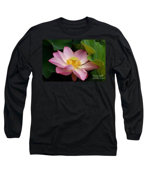 Sacred Lotus Long Sleeve T-Shirt