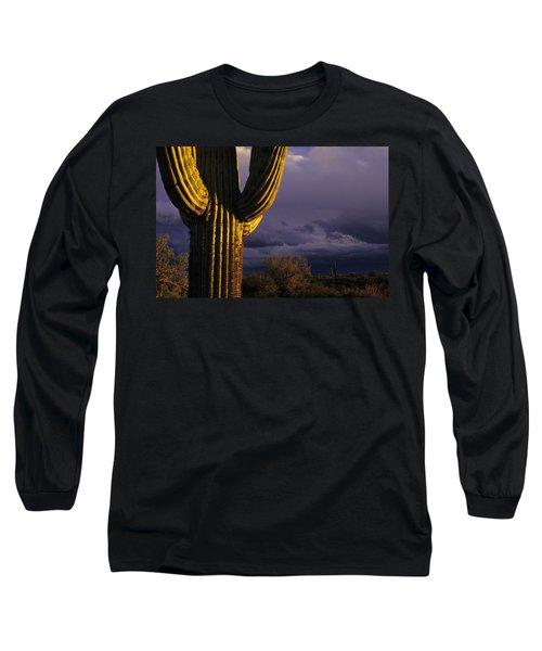 Saguaro Cactus Sunset At Dusk Arizona State Usa Long Sleeve T-Shirt