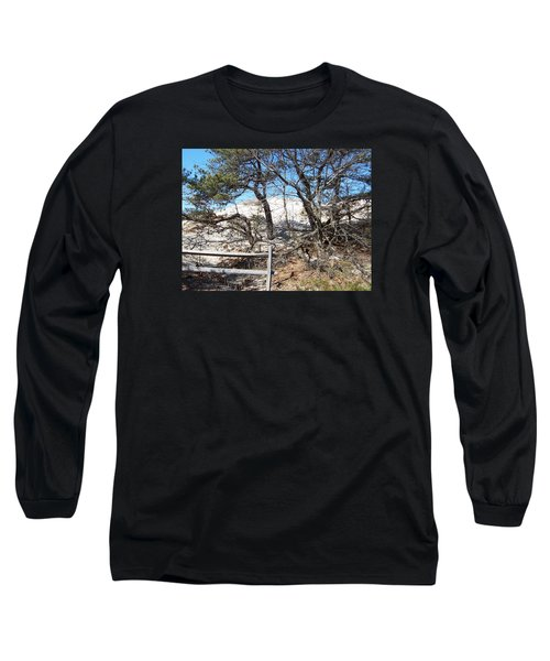 Sand Dune With Trees Long Sleeve T-Shirt by Catherine Gagne