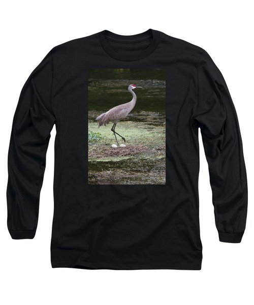 Long Sleeve T-Shirt featuring the photograph Sandhill Crane And Eggs by Paul Rebmann