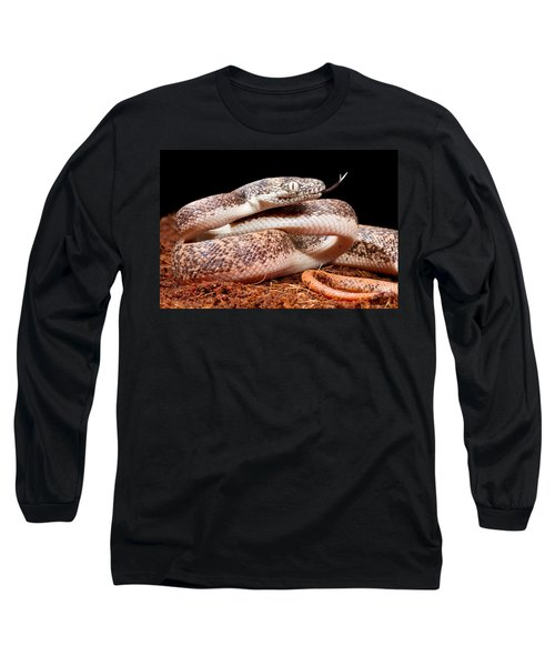Savu Python In Defensive Posture Long Sleeve T-Shirt