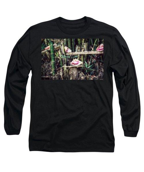 Seaside Display Long Sleeve T-Shirt by Melanie Lankford Photography
