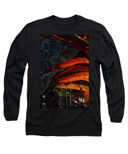 Seasonal Color Theory Long Sleeve T-Shirt by Brian Boyle