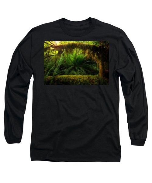 Sheltered Fern Long Sleeve T-Shirt