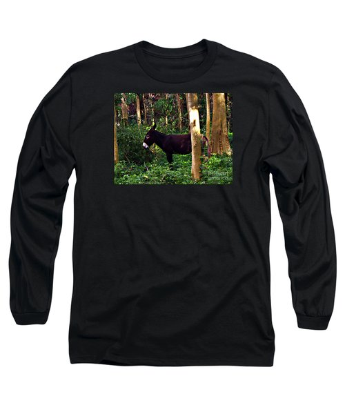 Shhh I'm Hiding Long Sleeve T-Shirt by Patricia Griffin Brett
