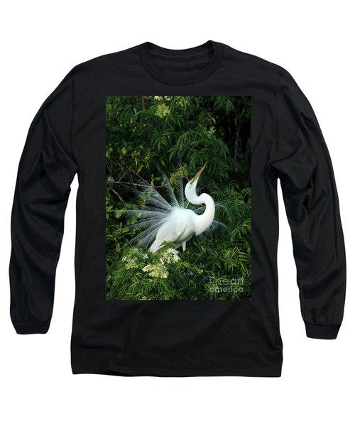 Showy Great White Egret Long Sleeve T-Shirt