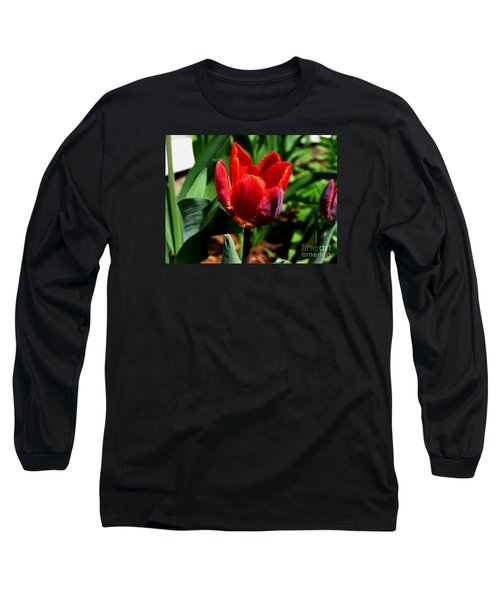 Sign Of Spring Long Sleeve T-Shirt