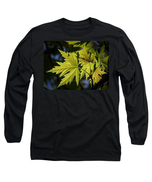 Silver Maple Long Sleeve T-Shirt