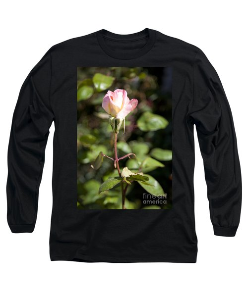 Long Sleeve T-Shirt featuring the photograph Single Rose by David Millenheft