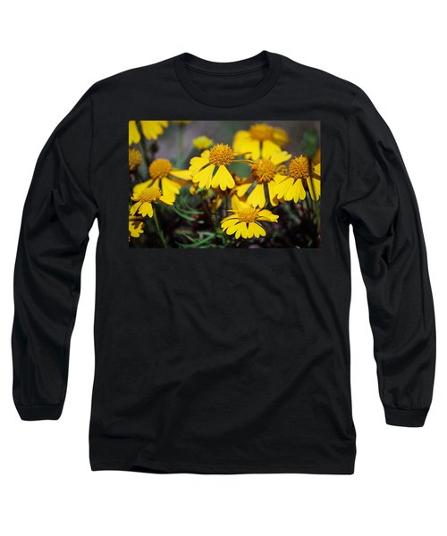 Long Sleeve T-Shirt featuring the photograph Sneezeweed by Ester  Rogers