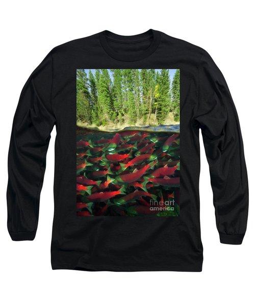 Sockeye Salmon Run Long Sleeve T-Shirt