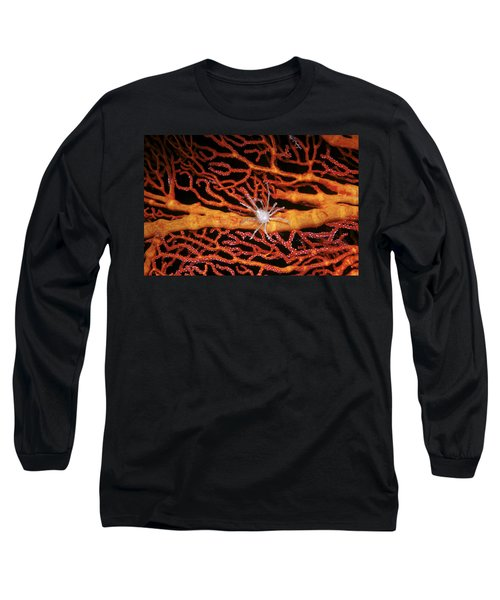 Soft Coral Crab On Red Gorgonian Long Sleeve T-Shirt