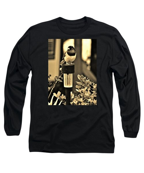 Long Sleeve T-Shirt featuring the photograph Solar Light Sitting by VLee Watson