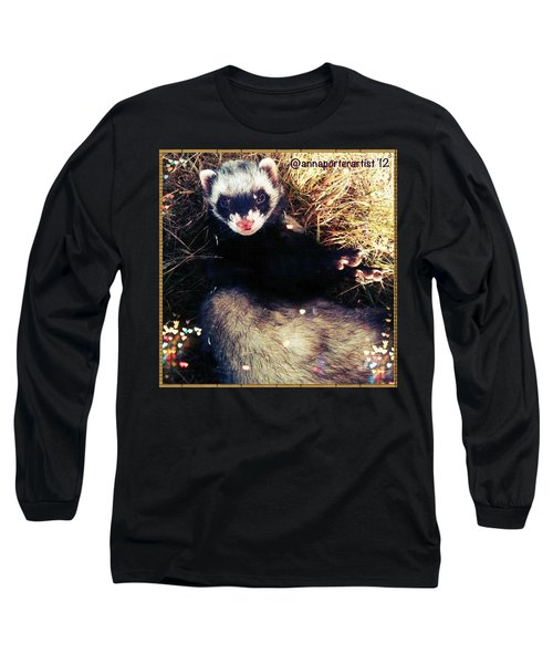 Sometimes We Like To Roll In The Straw #ferrets #pets Long Sleeve T-Shirt