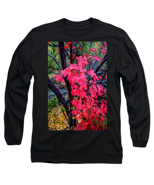 Southern Fall Long Sleeve T-Shirt
