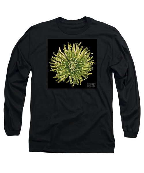 Spider Mum Long Sleeve T-Shirt by Jerry Fornarotto