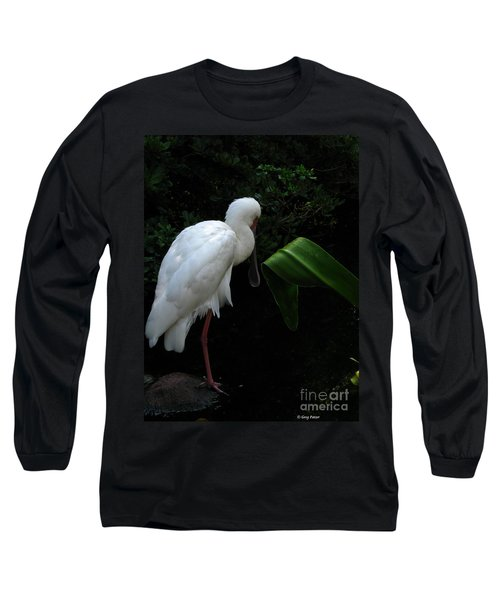 Spoonbill Morning Long Sleeve T-Shirt