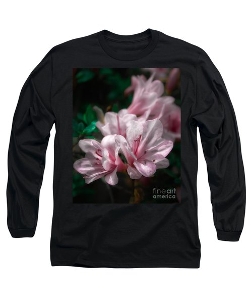 Spring Blossoms #2 Long Sleeve T-Shirt