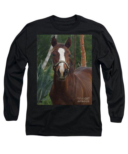 Long Sleeve T-Shirt featuring the photograph Stared Down by Peter Piatt