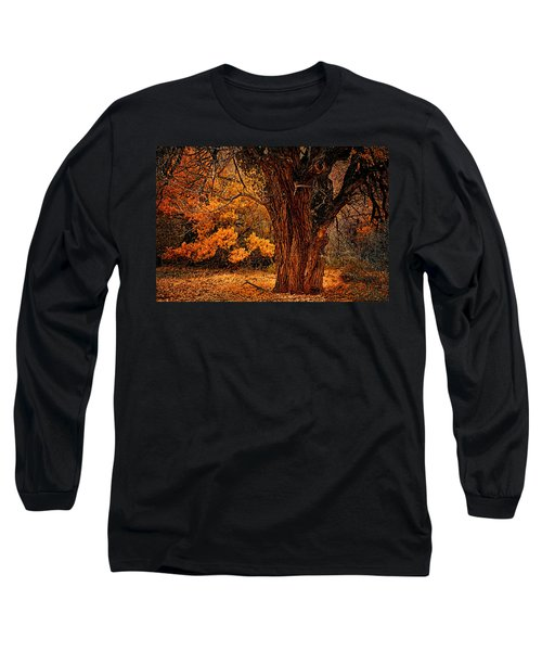 Long Sleeve T-Shirt featuring the photograph Stately Oak by Priscilla Burgers