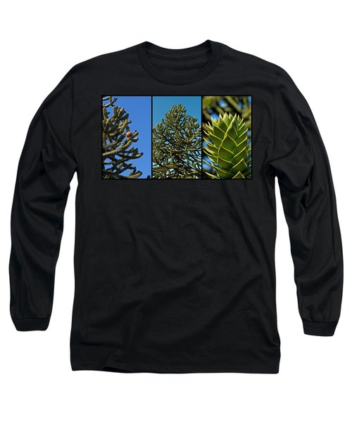 Study Of The Monkey Puzzle Tree Long Sleeve T-Shirt