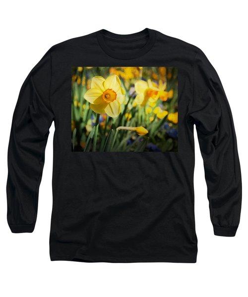 Sun Seeker Long Sleeve T-Shirt