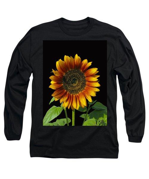 Sunny Delight Long Sleeve T-Shirt