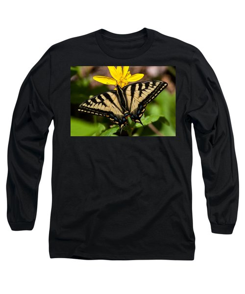 Swallowtail Butterfly Long Sleeve T-Shirt by Jack Bell