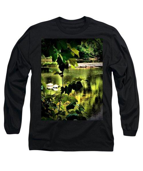 Swan Dive Long Sleeve T-Shirt by Robert McCubbin