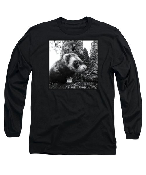 Sweet Little Nicky Chillin In A Tree Long Sleeve T-Shirt by Anna Porter