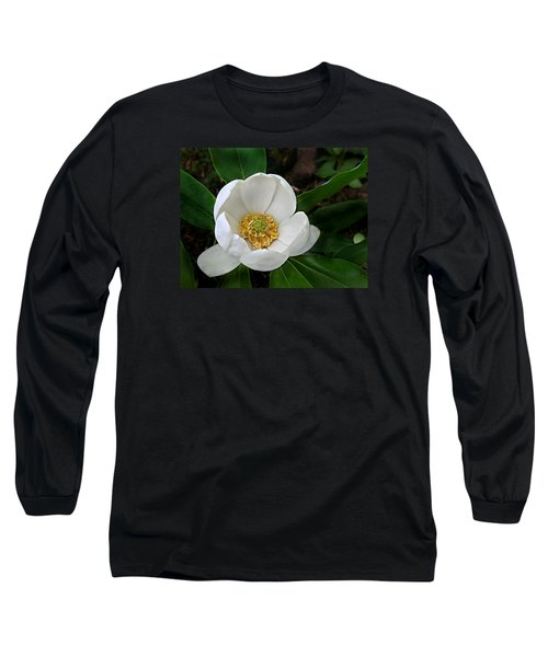 Sweetbay Magnolia Long Sleeve T-Shirt by William Tanneberger