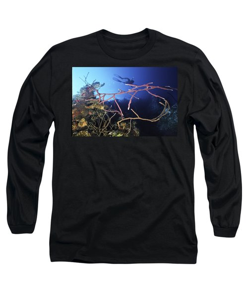 Swimming Over The Edge Long Sleeve T-Shirt