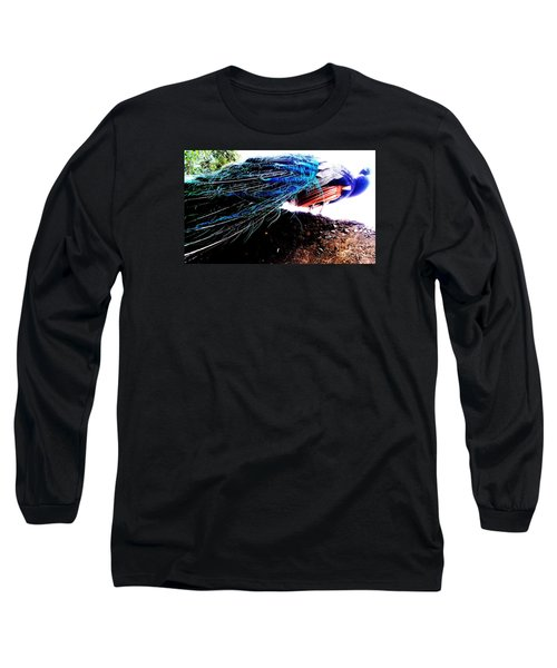 Tail Of Peacock Long Sleeve T-Shirt