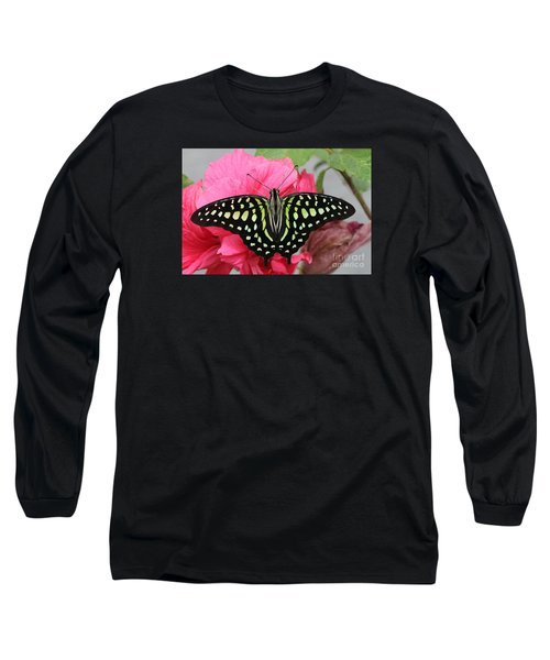 Long Sleeve T-Shirt featuring the photograph Tailed Jay Butterfly #6 by Judy Whitton