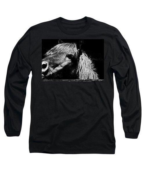 Teton Horse Long Sleeve T-Shirt