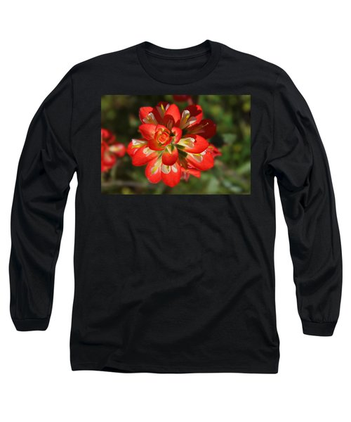 Texas Paintbrush Long Sleeve T-Shirt