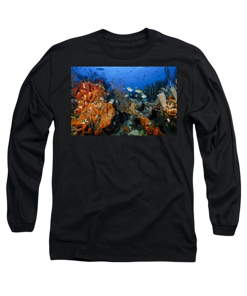 The Active Reef Long Sleeve T-Shirt