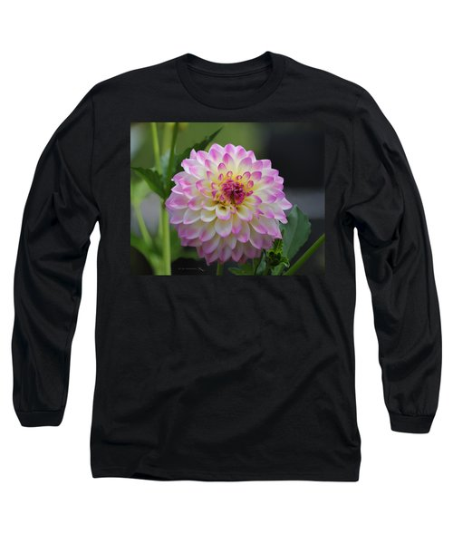 The Beautiful Dahlia Long Sleeve T-Shirt
