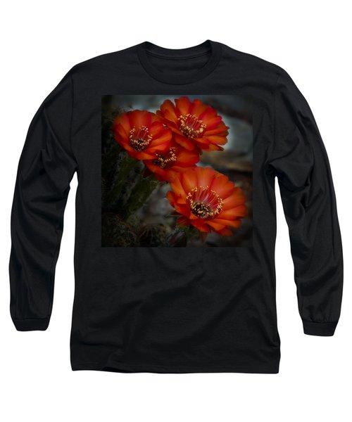 The Beauty Of Red Long Sleeve T-Shirt by Saija  Lehtonen