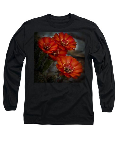 The Beauty Of Red Long Sleeve T-Shirt
