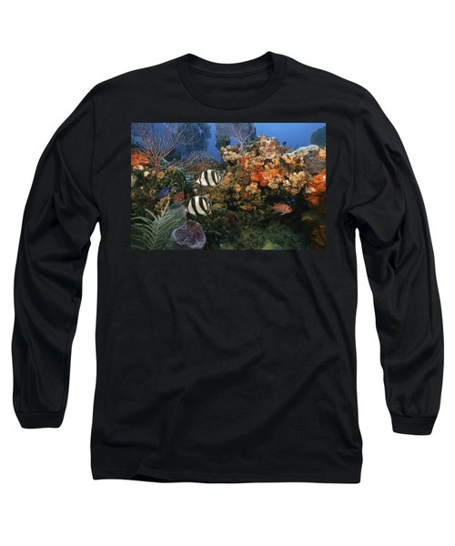 The Butterflyfish On Reef Long Sleeve T-Shirt