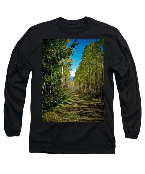 Long Sleeve T-Shirt featuring the painting The Cool Path Through Arizona Aspens by John Haldane