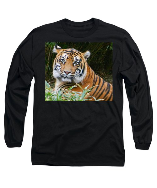The Eyes Of A Sumatran Tiger Long Sleeve T-Shirt by Emmy Marie Vickers