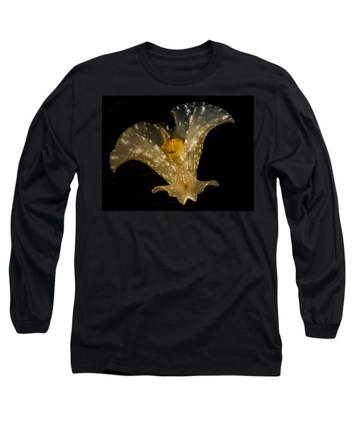 The Flying Aplysia Brasiliana Two Long Sleeve T-Shirt