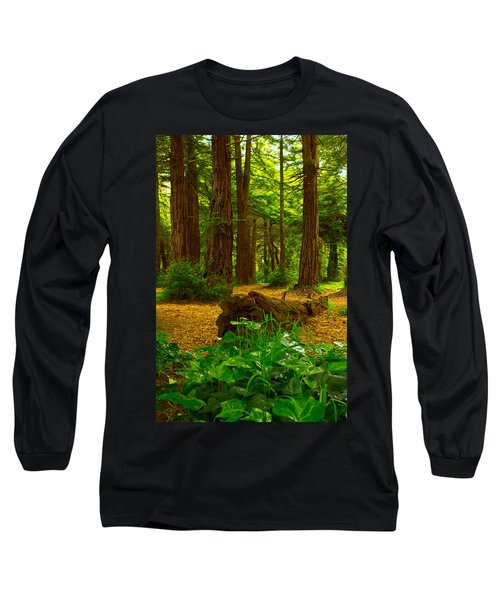 The Forest Of Golden Gate Park Long Sleeve T-Shirt