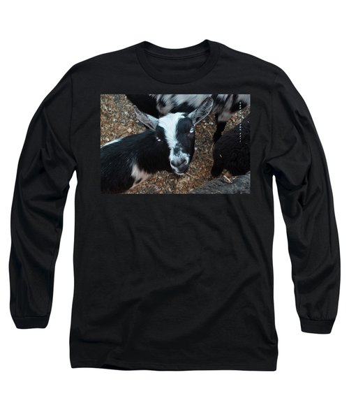 Long Sleeve T-Shirt featuring the photograph The Goat With The Gorgeous Eyes by Verana Stark