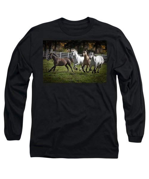 The Goldendale Four Long Sleeve T-Shirt by Wes and Dotty Weber