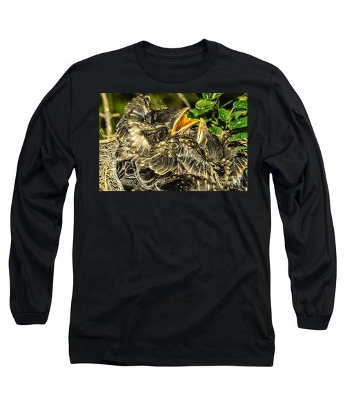 The Nestlings In Anticipation Of Food Long Sleeve T-Shirt